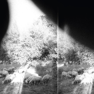 Godspeed You! Black Emperor - Asunder, Sweet, and Other Distress