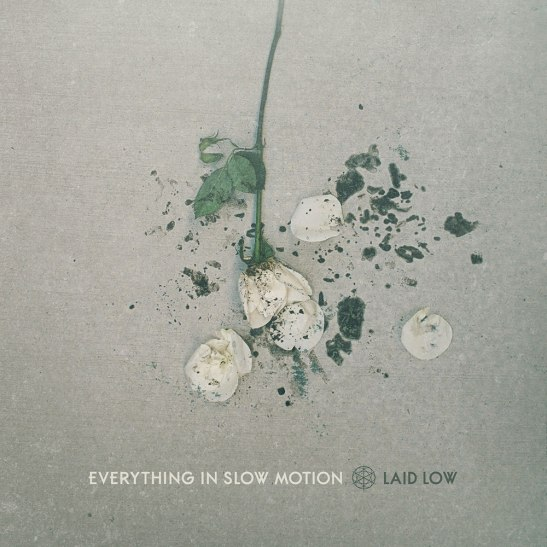 everything-in-slow-motion-laid-low